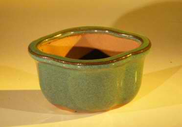 "Glazed Ceramic Bonsai Pot - Oval 5.0"" x 4.25"" x 2.75"""