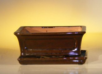 Ceramic Bonsai Pot With Attached Humidity/Drip Tray-Prof. Series
