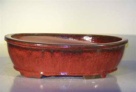 "Ceramic Bonsai Pot - Oval - 14.0"" x 11.0"" x 4.0"""