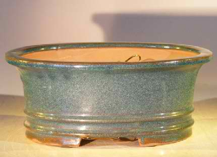 Bonsai Pot - Professional Series Oval - Blue/Green