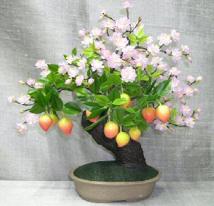 Artificial Prunus Bonsai Tree