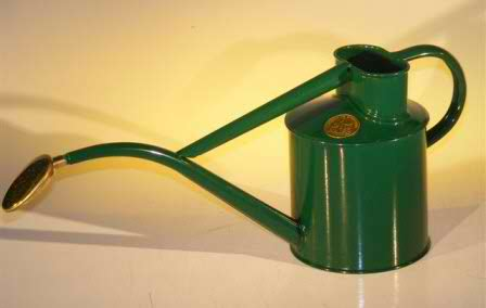 Green Metal Watering Can - 2 Pints