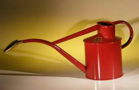 Burgundy Metal Watering Can - 2 Pints