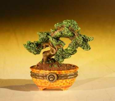 Miniature Bonsai Tree Treasure Box