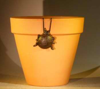 Cast Iron Hanging Garden Pot Decoration - Lady Bug