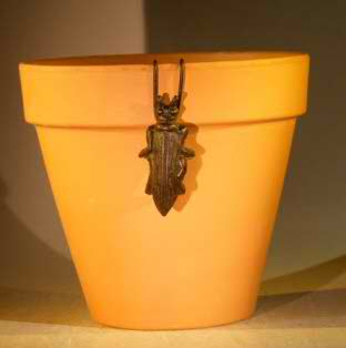 Cast Iron Hanging Garden Pot Decoration - Wasp