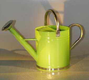 Zinc Watering Can - Pastel Green Color