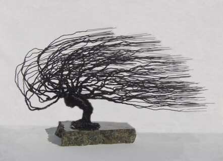 Wire Bonsai Tree Sculpture - Windswept Style